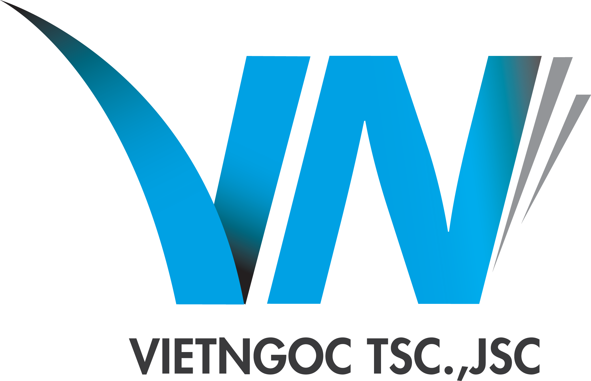 VIET NGOC INTERNATIONAL HUMAN RESOURCE STOCK COMPANY